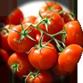 supplemento-pomodorini