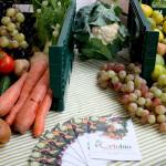 cassette-frutta-verdura-bio