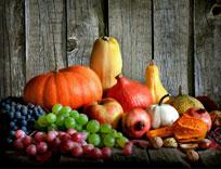 zucche-autunno
