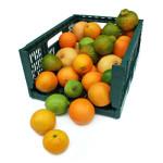 mix-agrumi-arance-limoni-biologici