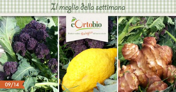 il-meglio-della-settimana-Cortobio-broccolo-cedro-topinambur