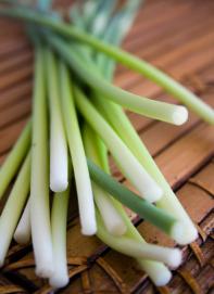 bigoli-aglio-talli-germogli
