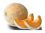 melone-biologico-capitol-cortobio