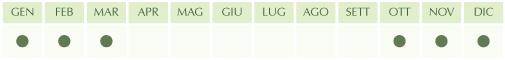 stagionalita-cavolo-nero-ottobre-marzo