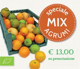 agrumi-mix-13