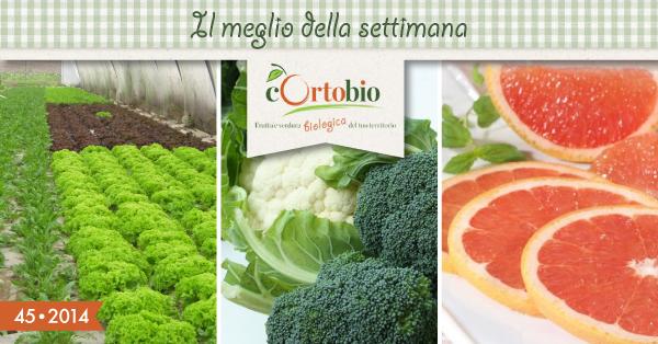 il-meglio-cortobio-rucola-broccoli-pompelmo-bio