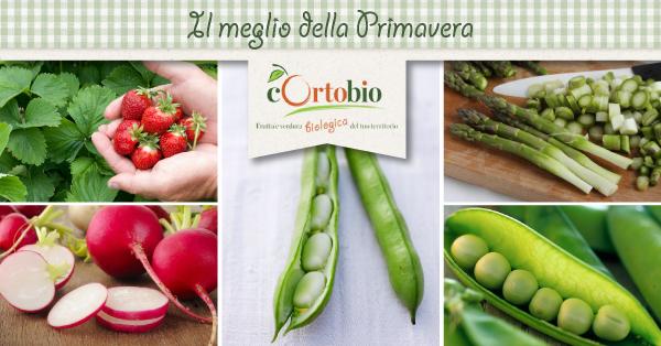 Il meglio della primavera: ortaggi di stagione Cortobio