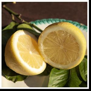 limoni biologici