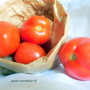 pomodori cencara