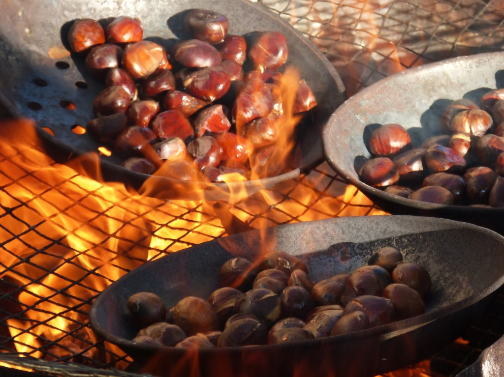 chestnuts-1783878_1920