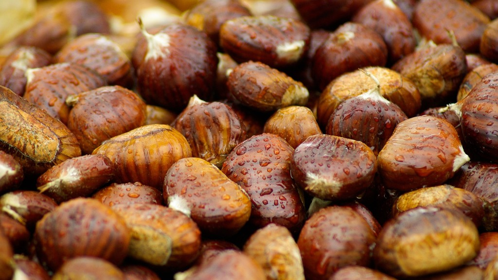 chestnuts-994138_1920