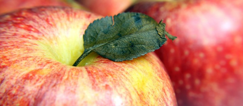 apple-630379_1920